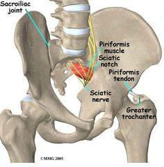SIJ anatomy 3