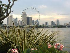 Uitzicht over de stad met de Singapore Flyer op de achtergrond #singaporeflyer #singapore
