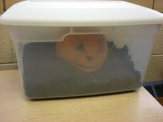"science. Use with book Pumpkin Jack. observe how ""Jack"" decomposes"