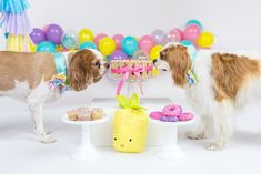 Tropical Pool Party for Puppies on Kara's Party Ideas | KarasPartyIdeas.com (11)