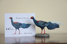 Swinhoe's Pheasant 1:10 scale - Harriet Knibbs Sculptures - for sale