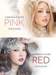 상품상세이미지 Pony Makeup, Hair Makeup, K Beauty, Hair Beauty, Pony Effect, Pink Blossom, Make It Simple, Makeup Looks, Kawaii