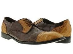 Wolf - two-tone shoes