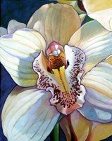 """Claudia's White Orchid30"""" x 24""""sold"""