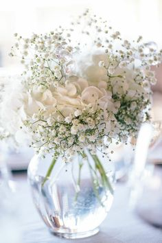 Hydrangea with baby's breath