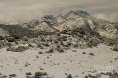 A beautiful winter scene in Arizona's high country. Photo by Chandra Nyleen