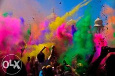 colored holi powder | OLX.ph
