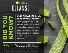 Agave Extract and Aloe Vera Leaf Gel work synergistically to help nourish microflora in your colon while promoting the cellular health of your colon's cell walls.Blue Agave Extract with a slow-fermenting, soluble fiber reaches deep into the colon, working as a prebiotic to feed good bacteria and rebalance microflora while slowly cleansing out toxins for a more comfortable cleanse. http://totalbody180.myitworks.com/shop/product/326/