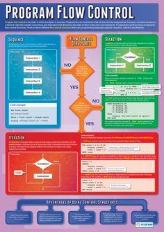 Program Flow Control Poster