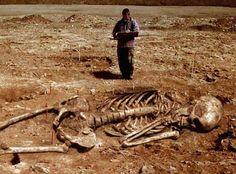 ギリシャで古代の巨人の骨発掘? 【気になるニュース】 - マイクロップギフト スタッフブログ