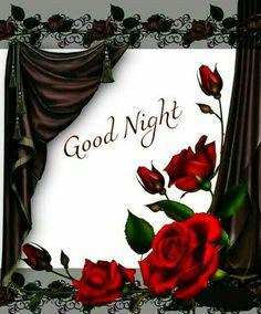 Good Night Cat, Good Night Love Messages, Good Night Flowers, Good Night I Love You, Beautiful Good Night Images, Romantic Good Night, Good Night Greetings, Sweet Night, Good Night Wishes