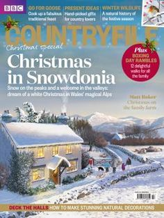 How to see the Northern Lights in Britain   Countryfile.com
