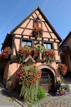 Bergheim, Alsace, France, 2015