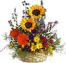 Order online mixed bright flower basket and get free home delivery to all location in Hyderabad. Secured online payments. Visit our site : www.flowersgiftshyderabad.com/Christmas-Gifts-to-Hyderabad.php