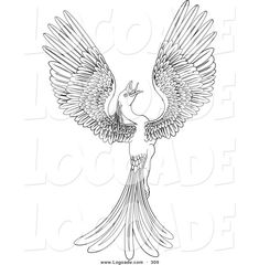 Wonderful Picture of Phoenix Coloring Page . Phoenix Coloring Page Logo Of A Black And White Coloring Page Of A Magical Flying Phoenix Bird Coloring Pages, Free Printable Coloring Pages, Adult Coloring Pages, Pictures Of Phoenix, White Bird Tattoos, Picture Engraving, Wonderful Picture, Cover Tattoo, Mythical Creatures
