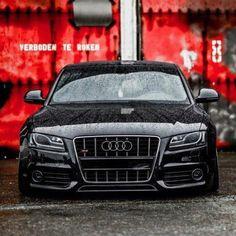 Audi.....vvv.....