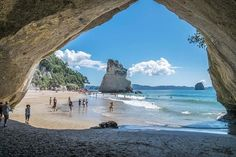 Summer at the Cove. Cathedral Cove, New Zealand
