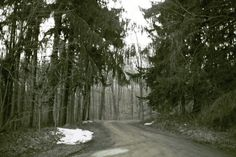 <b>Clinton Road (located in West Milford, New Jersey) has spooked locals and visitors for decades.</b> Here