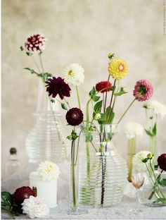 Nina Broberg and dahlias again for IKEA. Love it!