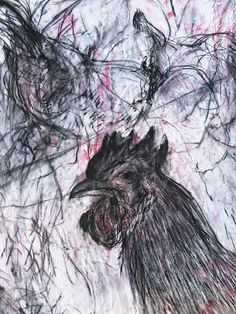 Mark the Rooster, charcoal & gesso on Canvas Rooster, Charcoal, Canvas, Drawings, Creative, Prints, Animals, Abstract Paintings, Abstract