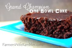 One Bowl Chocolate Cake.  This cake has one more grand champion ribbons than I can count.  Super moist!  ~ Farmer's Wife Rambles