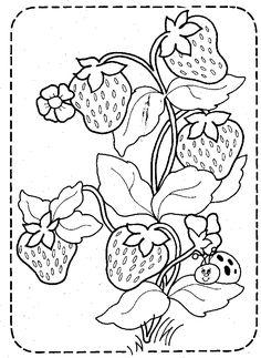 Coleção Moranguinho * Strawberry Shortcake