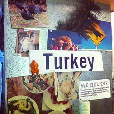 Turkey belongs on the table beyond Thanksgiving!