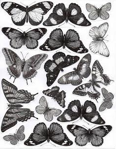 Printable Shrink Art butterflies.