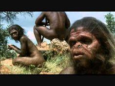 VÍDEO DE LA EVOLUCIÓN HUMANA POR FASES.