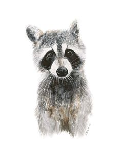 Raccoon Woodland Baby Raccoon Art Print by TinyToesDesign on Etsy