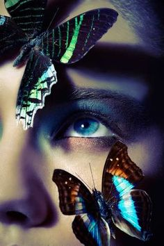 Beautiful butterflies / karen cox. Illuminated Insect Editorials - The Ephemeral Clara Copley Beauty Story is Inspired by Butterflies (GALLERY)