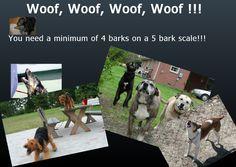 2012 05 10 12 56 05 Social Media marketing for Dogs: Follow my blog!
