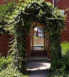 garden arches google search