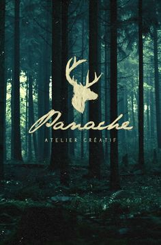 PANACHE by Eric Dufresne, via Behance