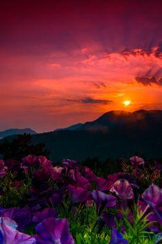 "lsleofskye:  "" Turkish Sunset  """