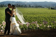 Sonoma wine country has many wonderful vineyard venues, top reception services and awesome food and wines for all styles of events.