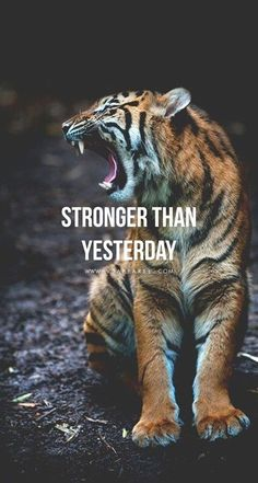 You are so much stronger than you think! Head over to www.V3Apparel.com/MadeToMotivate to download this wallpaper and many more for motivation on the go! / Fitness Motivation / Workout Quotes / Gym Inspiration / Motivational Quotes / Motivation - Tap the link to learn the secret on how you can make a lot of money without a job! #FitnessMotivation