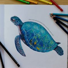 Instagram media by zuzka.hanova - --> If you're looking for the most popular adult coloring books and writing utensils including colored pencils, drawing markers, gel pens and watercolors, please visit http://ColoringToolkit.com. Color... Relax... Chill.