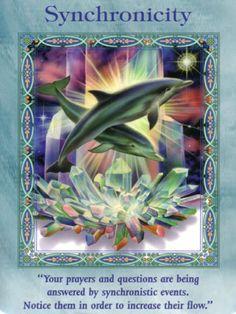 This Dolphin Synchronicity invites a happy dance - Joy Joy Joy!