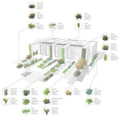 1 years' worth of harvest from your hydroponic gutters :: CRETE House for Solar Decathlon 2017