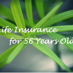 Can You Buy Life Insurance At Age 56 With Serious Health Problems Term Life Insurance, Life Insurance Companies, Car Insurance, Health Problems, Herbs, Age, Canning, Tips, Stuff To Buy
