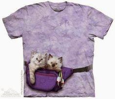PJ - MG - FASHION : Cool t-shirts and socks