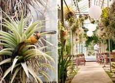 Love this venue in San Fran. http://www.shelldance.com/gardenrooms.html