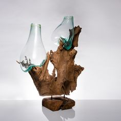 Teak Root + Two Molten Glass Vases (Medium)