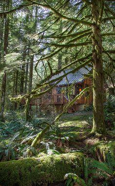 Little Cabin in the Woods by Alene Davis on Flickr.