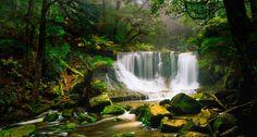 Horseshoe Falls, surrounded by rainforest, in the Mount Field National Park, Australia --Jochen Schlenker/Getty Images