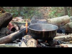 ▶ A Day In The Woods - YouTube