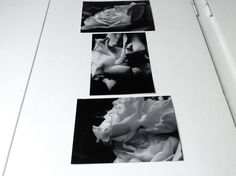 Melancholy: small photo prints collection by EasternHawkArt #wall art #black and white photography #roses photography #dreamy indoor decoration #floral posters #flower posters #quality photo prints #flower photo prints