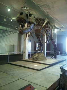 Rochester Museum & Science Center - The Rochester Museum and Science Center, or RMSC, is a museum in Rochester, New York that features many exhibits related to science.