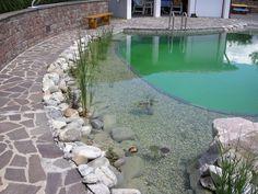 A natural swimming pond in Burgenland, Austria